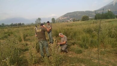 Θηροφύλακες εντόπισαν παράνομους κυνηγούς στην Κορινθία